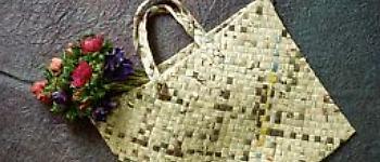 Shopbag2